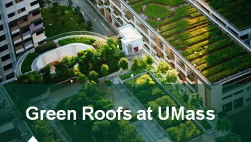 Green Roofs for a Greener Future:  An In-Depth Look at Increasing Building Efficiency at UMass Amherst