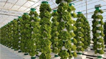 Increased Light Efficiency in Vertical Farms