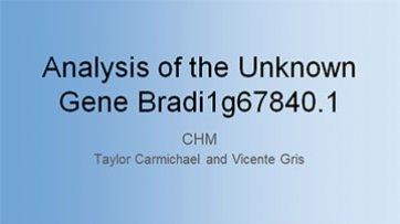 Analysis of the Unknown Gene Bradi1g67840.1