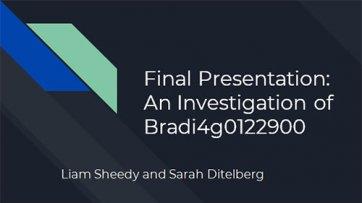 An Investigation of Bradi4g0122900
